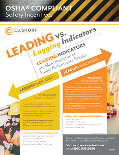 010-Wall-Chart-Leading-Versus-Lagging-Indicators.png