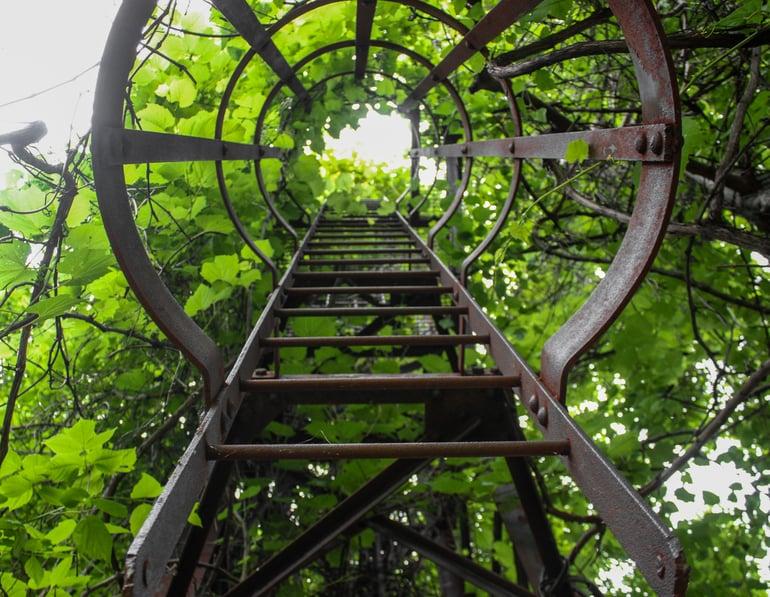 ladder-3.jpg