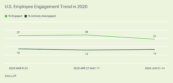 Gallup Engagement Data
