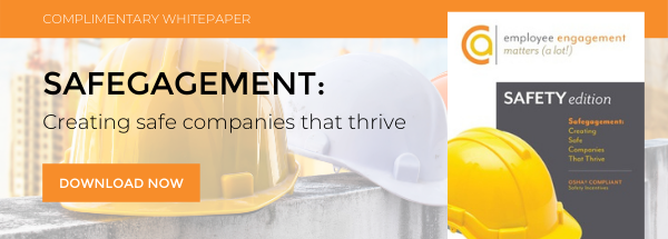 Safegagement: Creating Safe Companies That Thrive